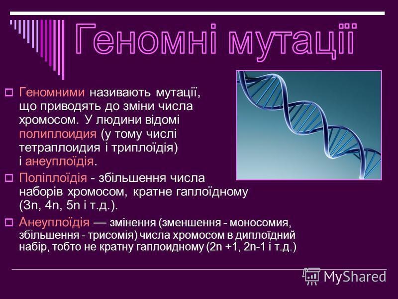 Геномними називають мутації, що приводять до зміни числа хромосом. У людини відомі полиплоидия (у тому числі тетраплоидия і триплоїдія) і анеуплоїдія. Поліплоїдія - збільшення числа наборів хромосом, кратне гаплоїдному (Зn, 4n, 5n і т.д.). Анеуплоїді
