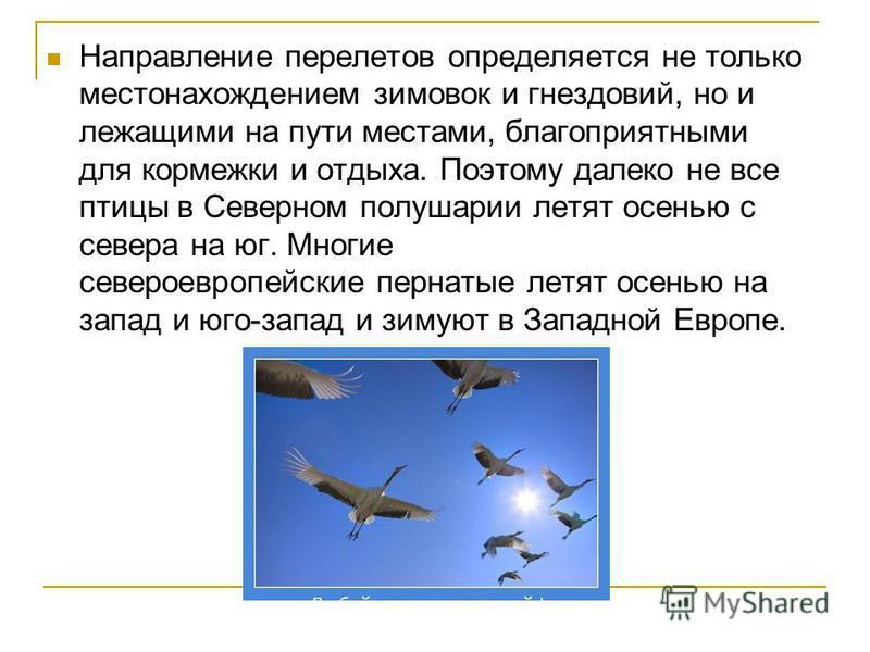 Направление перелетов определяется не только местонахождением зимовок и гнездовий, но и лежащими на пути местами, благоприятными для кормежки и отдыха. Поэтому далеко не все птицы в Северном полушарии летят осенью с севера на юг. Многие североевропей