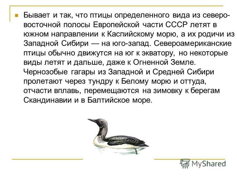 Бывает и так, что птицы определенного вида из северо- восточной полосы Европейской части СССР летят в южном направлении к Каспийскому морю, а их родичи из Западной Сибири на юго-запад. Североамериканские птицы обычно движутся на юг к экватору, но нек