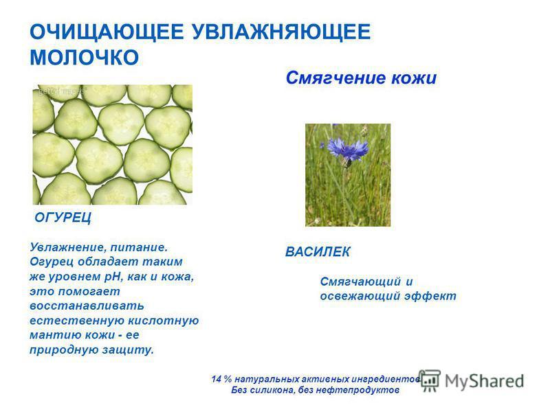 ОГУРЕЦ Увлажнение, питание. Огурец обладает таким же уровнем рН, как и кожа, это помогает восстанавливать естественную кислотную мантию кожи - ее природную защиту. Смягчающий и освежающий эффект Смягчение кожи 14 % натуральных активных ингредиентов Б