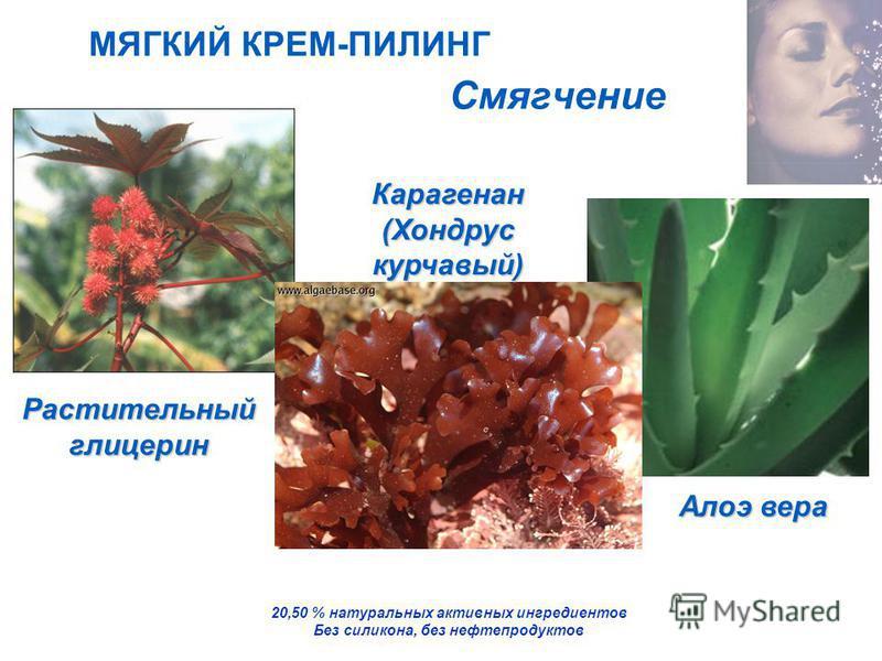 Растительный глицерин Смягчение 20,50 % натуральных активных ингредиентов Без силикона, без нефтепродуктов МЯГКИЙ КРЕМ-ПИЛИНГ Карагенан (Хондрус курчавый) Алоэ вера