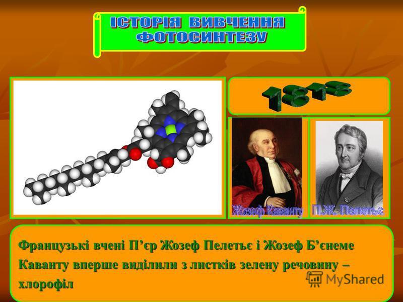 Французькі вчені Пєр Жозеф Пелетьє і Жозеф Бєнеме Каванту вперше виділили з листків зелену речовину – хлорофіл