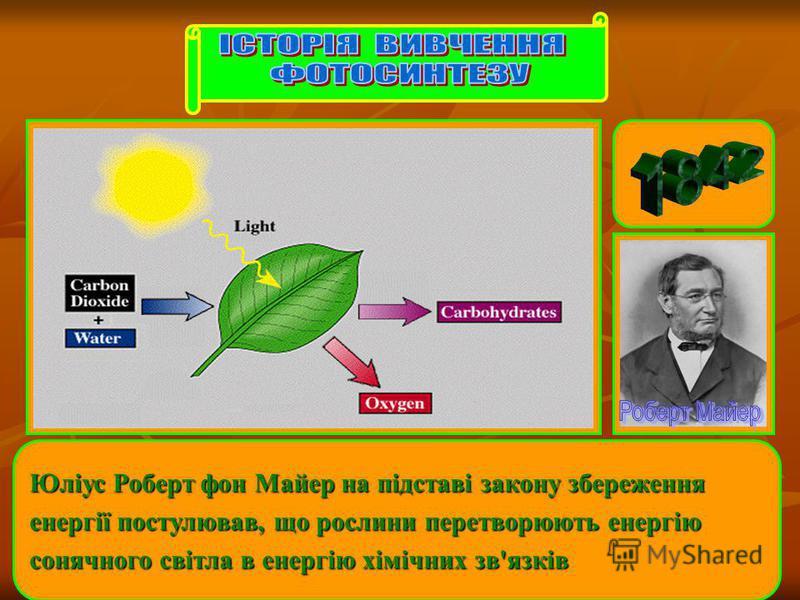 Юліус Роберт фон Майер на підставі закону збереження енергії постулював, що рослини перетворюють енергію сонячного світла в енергію хімічних зв'язків