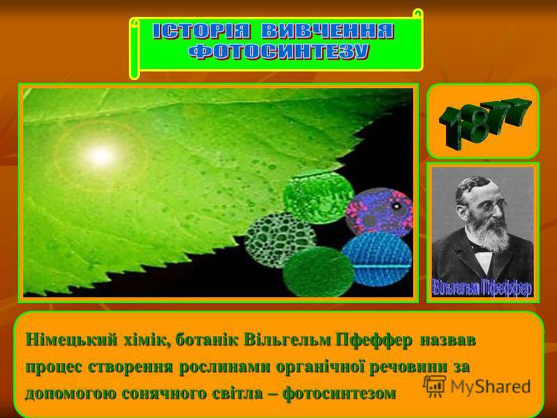Німецький хімік, ботанік Вільгельм Пфеффер назвав процес створення рослинами органічної речовини за допомогою сонячного світла – фотосинтезом