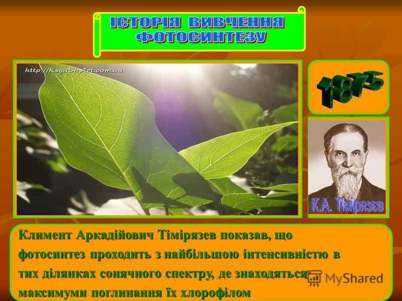 Климент Аркадійович Тімірязев показав, що фотосинтез проходить з найбільшою інтенсивністю в тих ділянках сонячного спектру, де знаходяться максимуми поглинання їх хлорофілом