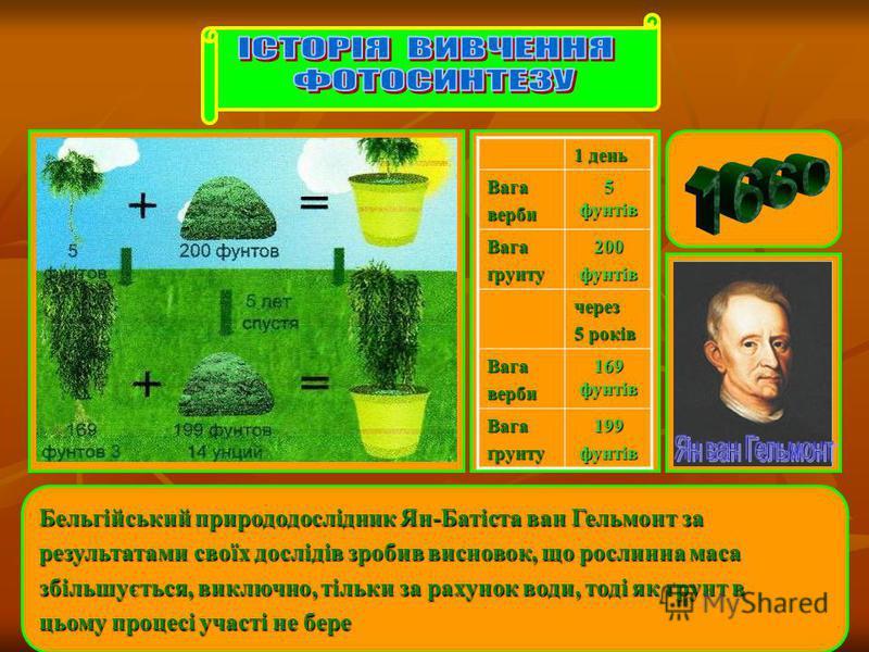 Бельгійський природодослідник Ян-Батіста ван Гельмонт за результатами своїх дослідів зробив висновок, що рослинна маса збільшується, виключно, тільки за рахунок води, тоді як ґрунт в цьому процесі участі не бере 1 день Вагаверби 5 фунтів Вагаґрунту20