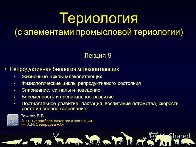 Репродуктивная биология млекопитающих Репродуктивная биология млекопитающих Жизненные циклы млекопитающих Жизненные циклы млекопитающих Физиологические циклы репродуктивного состояния Физиологические циклы репродуктивного состояния Спаривание: сигнал