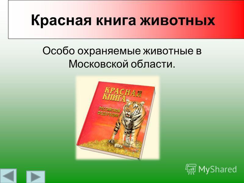 Работу выполнила Ученица 2 «В» класса средней школы 15 Зайцева Анастасия. Руководитель: Квасюк Н.А.