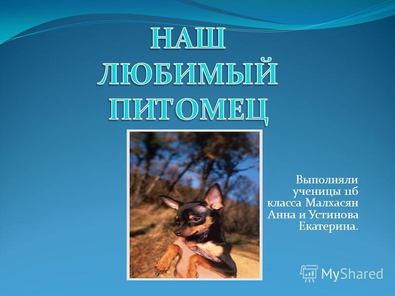 Выполняли ученицы 11 б класса Малхасян Анна и Устинова Екатерина.