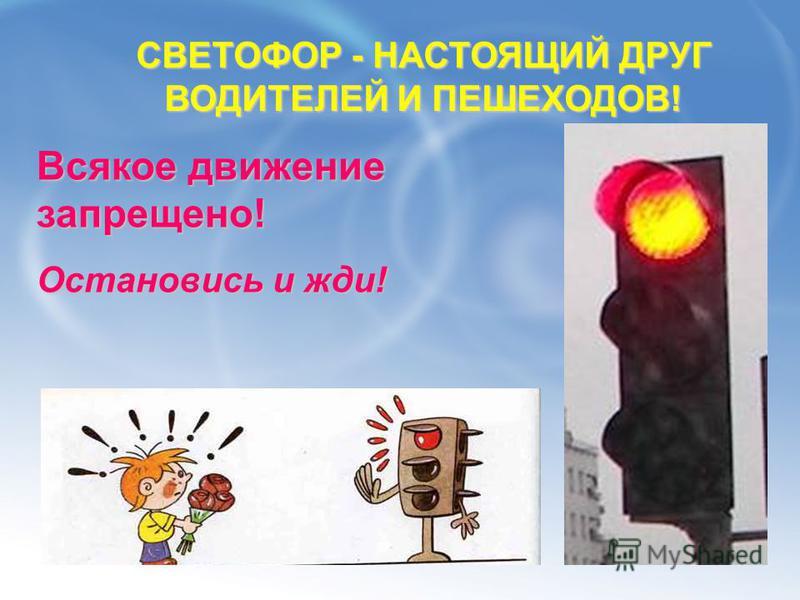 «несущий свет» «свет» «форос» «несущий» светофор