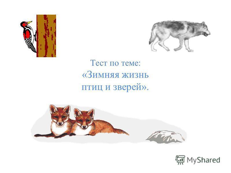 Тест по теме: «Зимняя жизнь птиц и зверей».