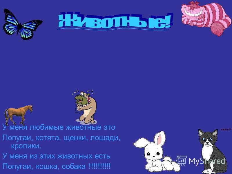 У меня любимые животные это Попугаи, котята, щенки, лошади, кролики. У меня из этих животных есть Попугаи, кошка, собака !!!!!!!!!!