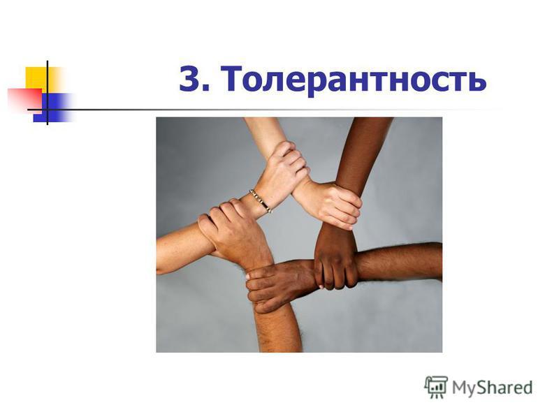 3. Толерантность