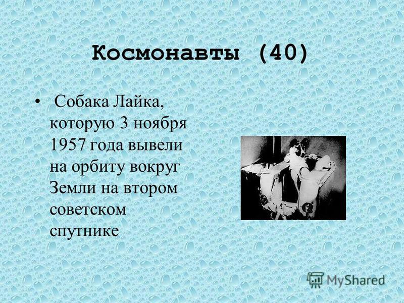 Космонавты (30)) Собака Лайка 3 ноября 1957 г. Первое живое существо, побывавшего в космосе