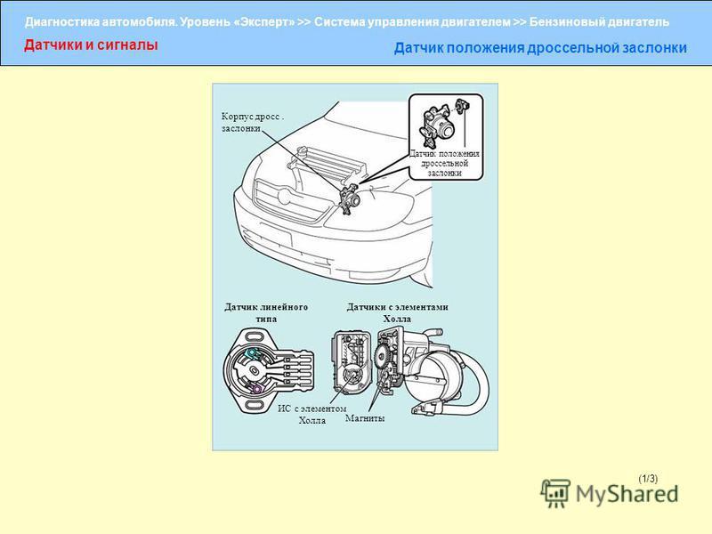 Диагностика автомобиля. Уровень «Эксперт» >> Система управления двигателем >> Бензиновый двигатель Датчики и сигналы Датчик положения дроссельной заслонки (1/3) Корпус дросс. заслонки Датчик положения дроссельной заслонки Датчик линейного типа Датчик