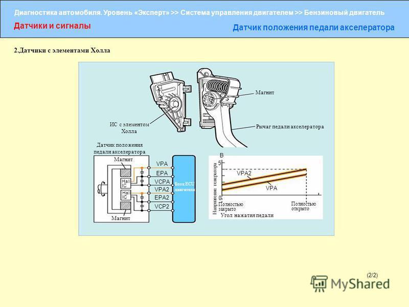 Диагностика автомобиля. Уровень «Эксперт» >> Система управления двигателем >> Бензиновый двигатель Датчики и сигналы Датчик положения педали акселератора (2/2) ИС с элементом Холла Магнит Рычаг педали акселератора Датчик положения педали акселератора