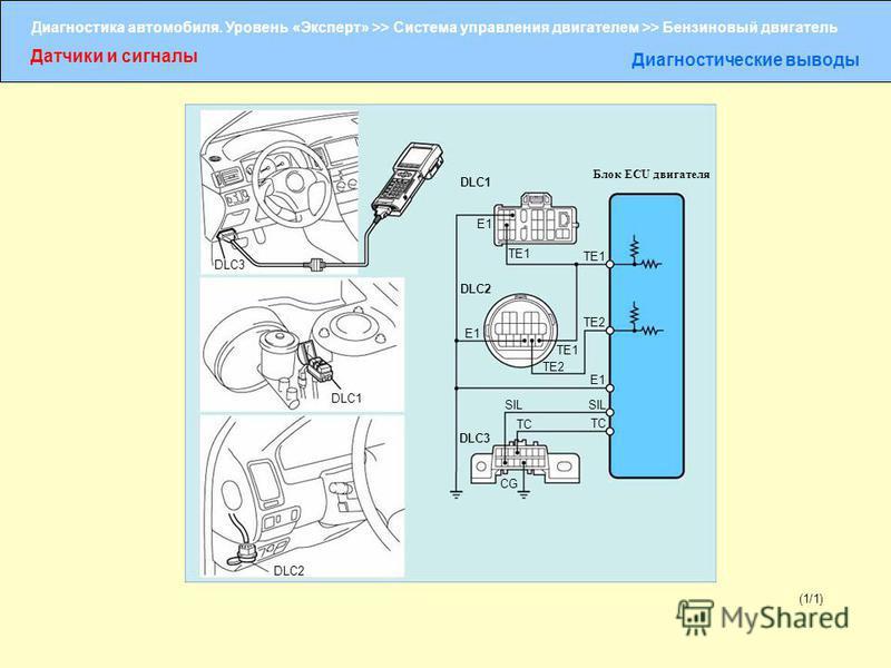 Диагностика автомобиля. Уровень «Эксперт» >> Система управления двигателем >> Бензиновый двигатель Датчики и сигналы Диагностические выводы (1/1) DLC3 DLC1 DLC2 DLC3 TC SIL TC TE2 TE1 TE2 TE1 E1 Блок ECU двигателя DLC1 DLC2 E1 CG E1