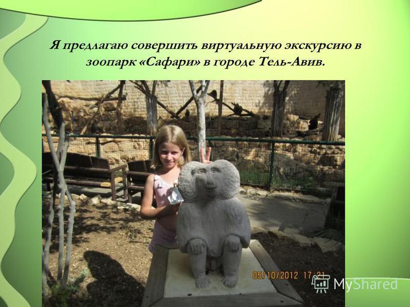 Я предлагаю совершить виртуальную экскурсию в зоопарк «Сафари» в городе Тель-Авив.