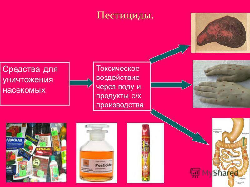 Пестициды. Средства для уничтожения насекомых Токсическое воздействие через воду и продукты с/х производства