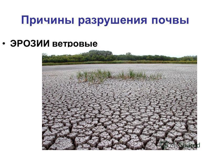Причины разрушения почвы ЭРОЗИИ ветровые