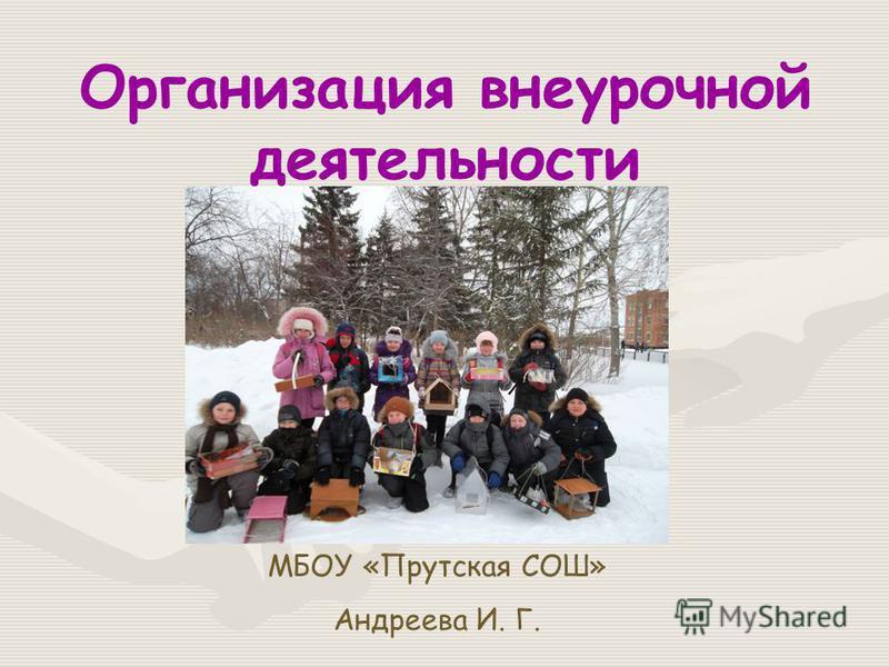 Организация внеурочной деятельности МБОУ «Прутская СОШ» Андреева И. Г.