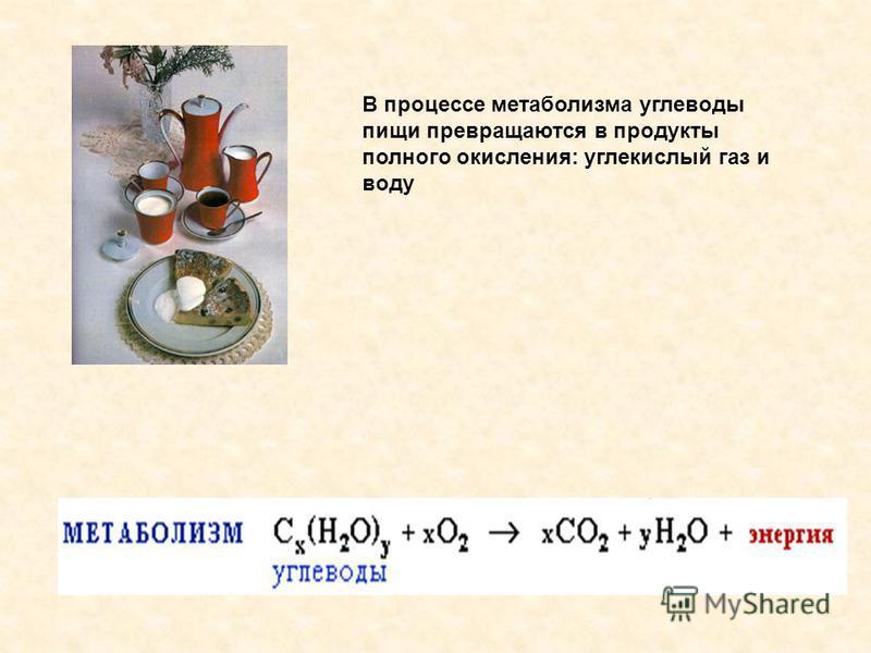 В процессе метаболизма углеводы пищи превращаются в продукты полного окисления: углекислый газ и воду