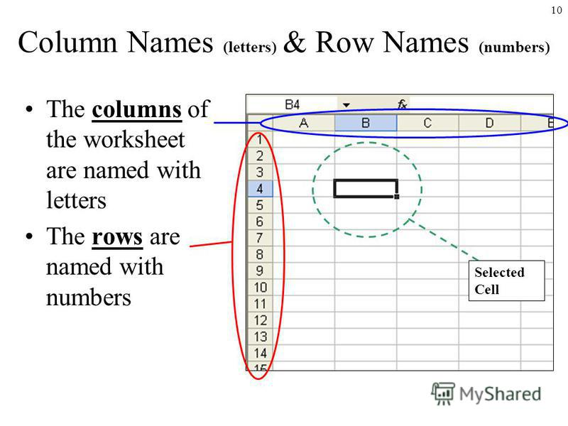 10 Column Names (letters) & Row Names (numbers) The columns of the worksheet are named with letters The rows are named with numbers Selected Cell