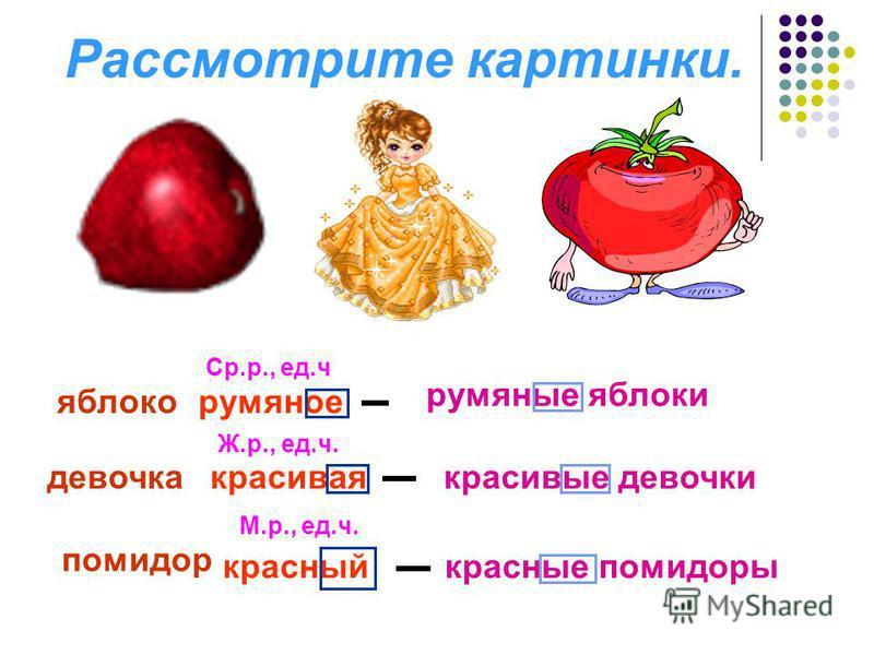 Рассмотрите картинки. яблоко девочка помидор румяное красивая красный Ср.р., ед.ч Ж.р., ед.ч. М.р., ед.ч. румяние яблоки красивие девочки красние помидоры