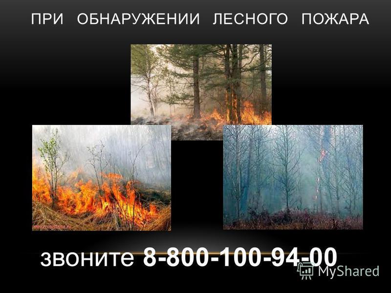 ПРИ ОБНАРУЖЕНИИ ЛЕСНОГО ПОЖАРА звоните 8-800-100-94-00