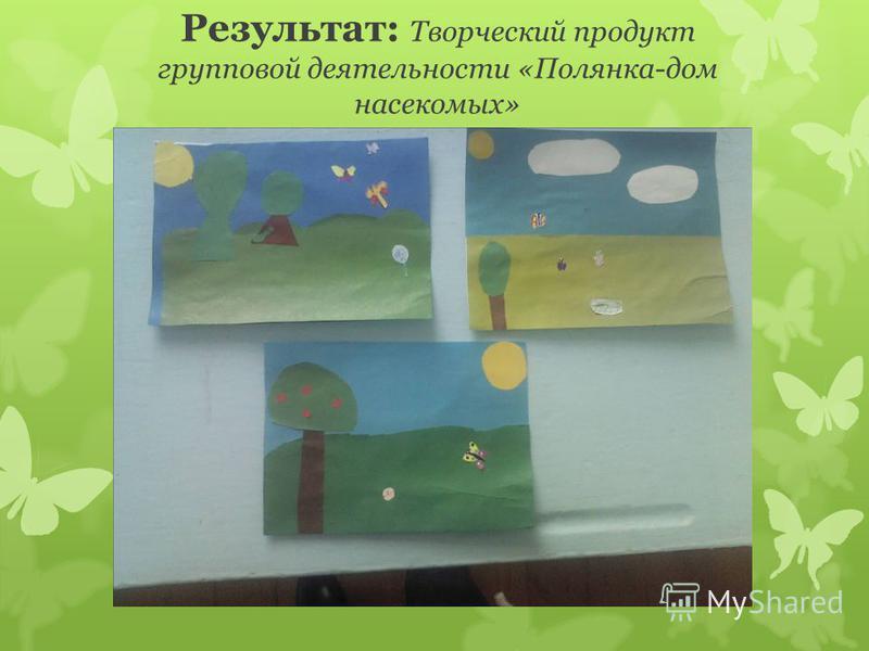 Результат: Творческий продукт групповой деятельности «Полянка-дом насекомых»