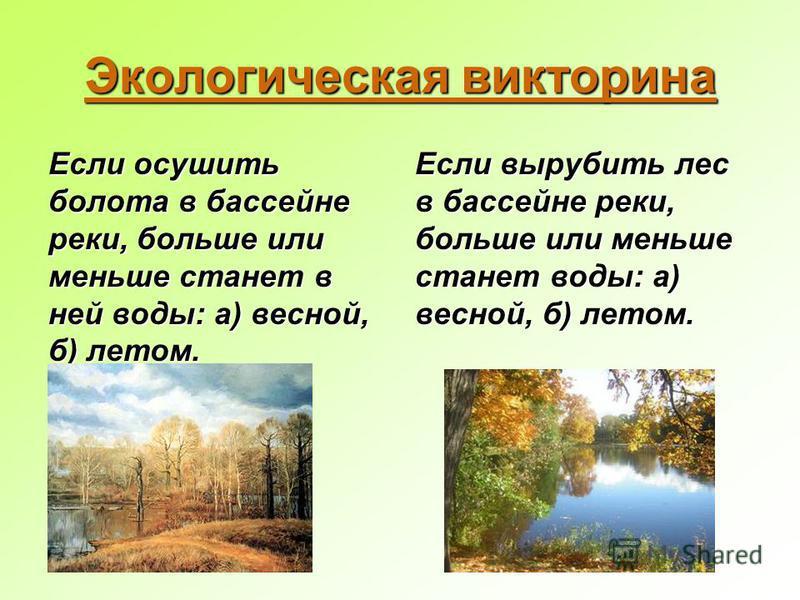 Экологическая викторина Если осушить болота в бассейне реки, больше или меньше станет в ней воды: а) весной, б) летом. Если вырубить лес в бассейне реки, больше или меньше станет воды: а) весной, б) летом.