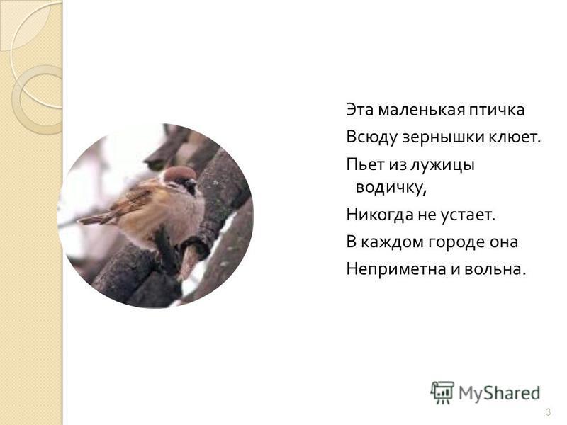 Эта маленькая птичка Всюду зернышки клюет. Пьет из лужицы водичку, Никогда не устает. В каждом городе она Неприметна и вольна. 3