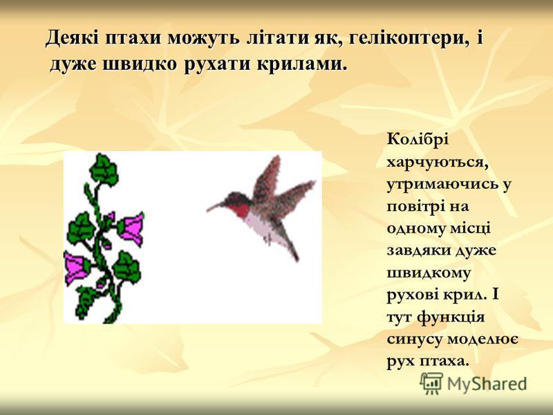 Деякі птахи можуть літати як, гелікоптери, і дуже швидко рухати крилами. Колібрі харчуються, утримаючись у повітрі на одному місці завдяки дуже швидкому рухові крил. І тут функція синусу моделює рух птаха.