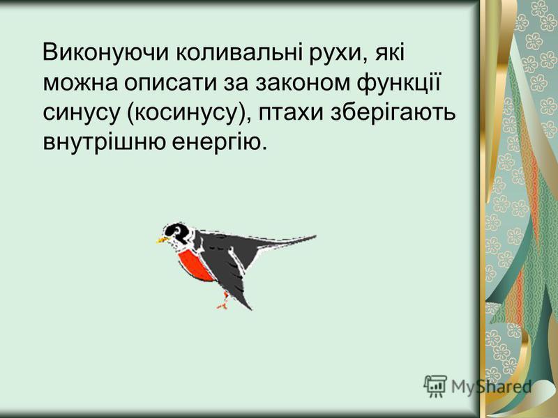 Виконуючи коливальні рухи, які можна описати за законом функції синусу (косинусу), птахи зберігають внутрішню енергію.