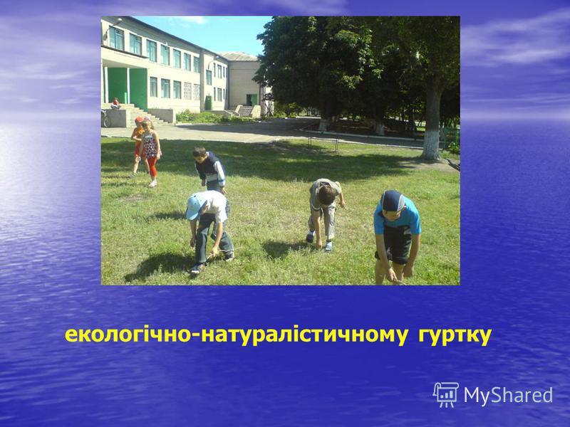 екологічно-натуралістичному гуртку