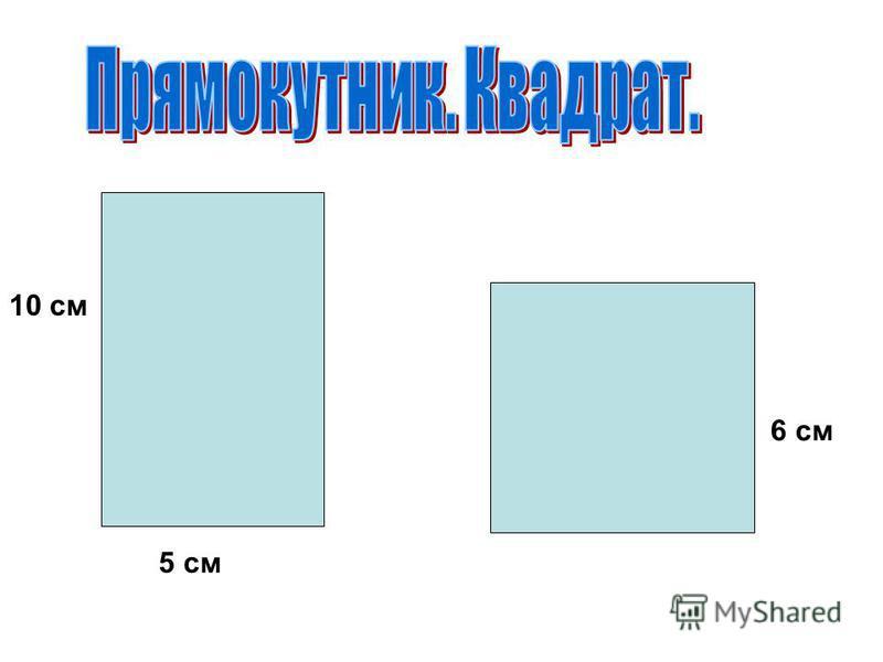 5 см 6 см 10 см