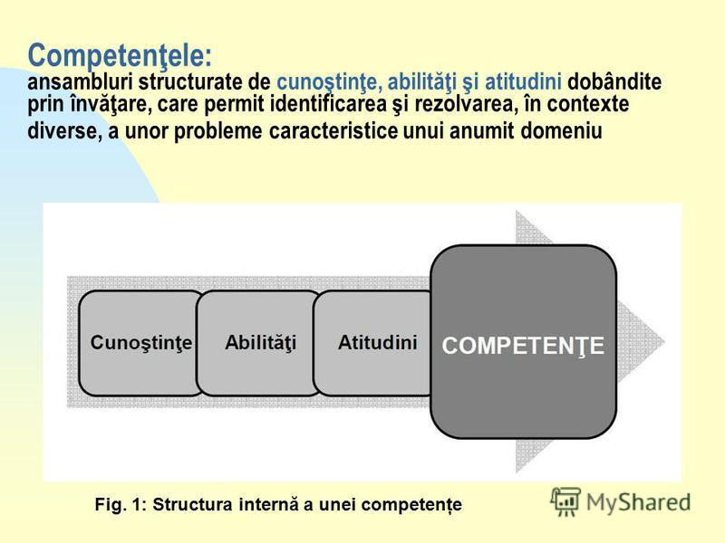 Fig. 1: Structura internă a unei competenţe Competenţele: ansambluri structurate de cunoştinţe, abilităţi şi atitudini dobândite prin învăţare, care permit identificarea şi rezolvarea, în contexte diverse, a unor probleme caracteristice unui anumit d