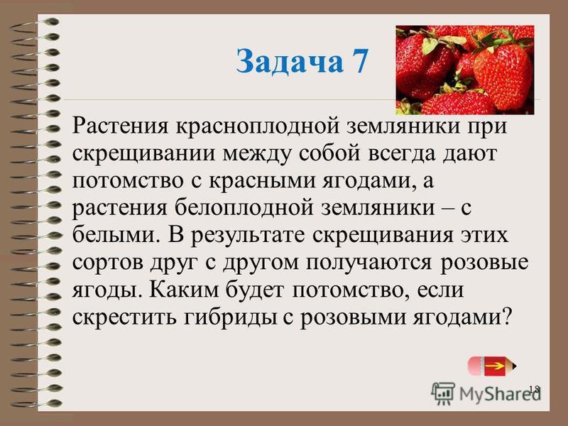 18 Задача 7 Растения красноплодной земляники при скрещивании между собой всегда дают потомство с красными ягодами, а растения белоплодной земляники – с белыми. В результате скрещивания этих сортов друг с другом получаются розовые ягоды. Каким будет п