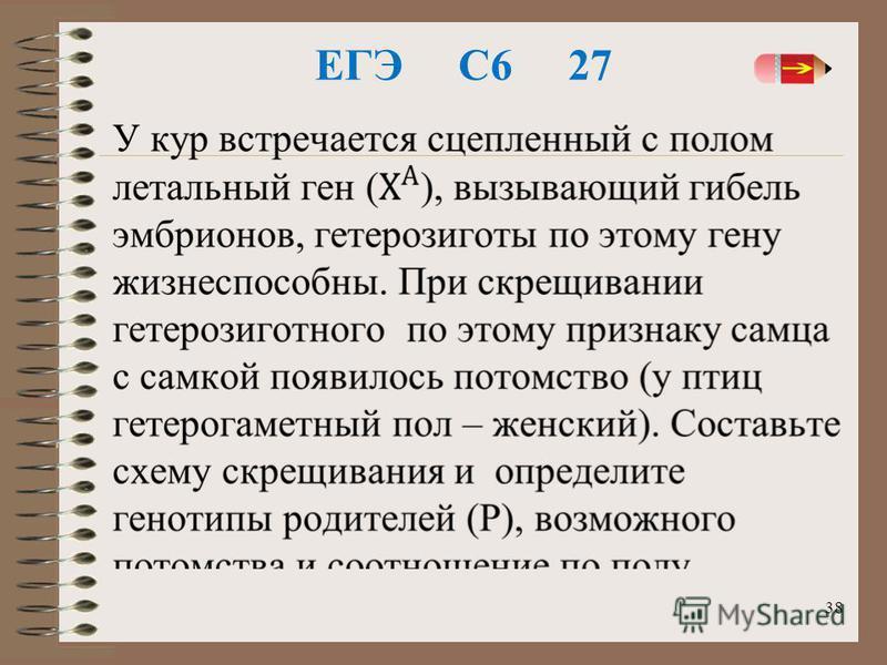 ЕГЭ С6 27 38