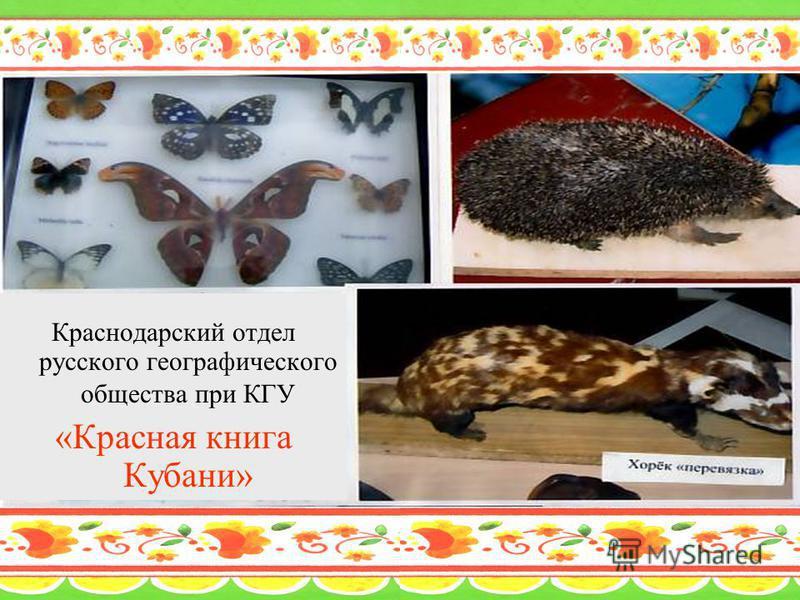 Краснодарский отдел русского географического общества при КГУ «Красная книга Кубани»