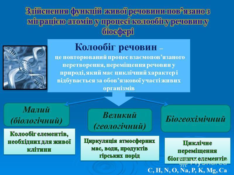 Колообіг речовин – це повторюваний процес взаємоповязаного перетворення, переміщення речовин у природі, який має циклічний характер і відбувається за обовязкової участі живих організмів Малий (біологічний) Великий (геологічний) Біогеохімічний С, Н, N