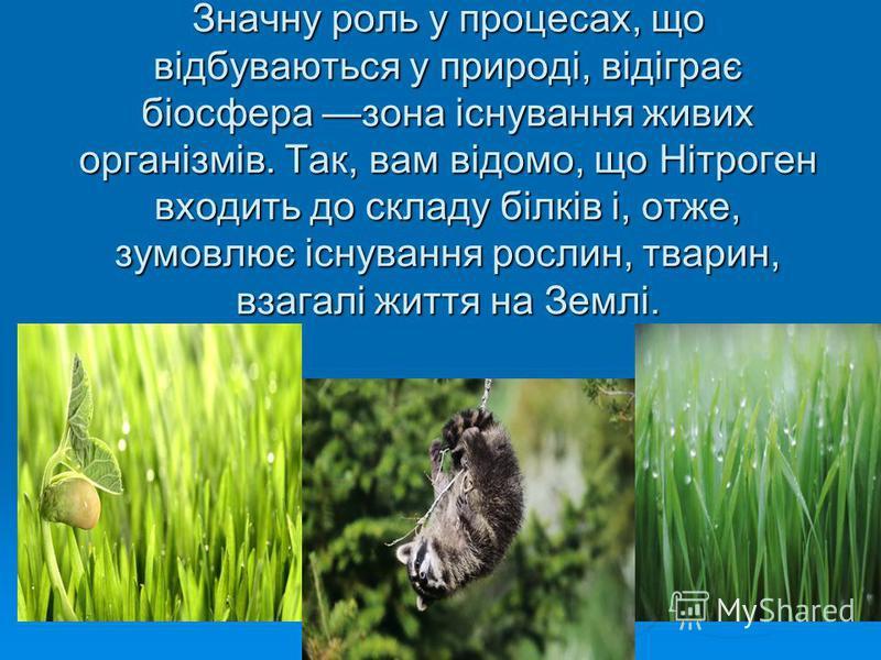 Значну роль у процесах, що відбуваються у природі, відіграє біосфера зона існування живих організмів. Так, вам відомо, що Нітроген входить до складу білків і, отже, зумовлює існування рослин, тварин, взагалі життя на Землі.