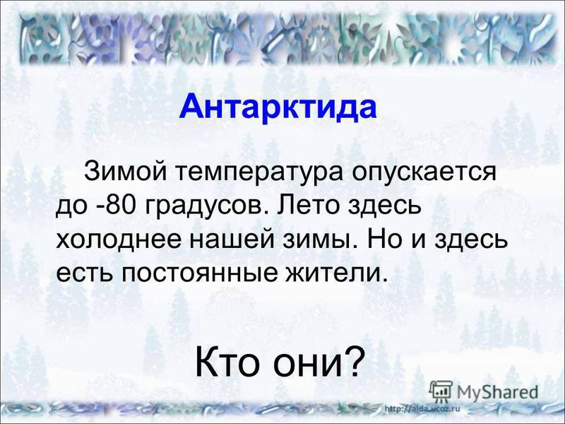 Антарктида Зимой температура опускается до -80 градусов. Лето здесь холоднее нашей зимы. Но и здесь есть постоянные жители. Кто они?