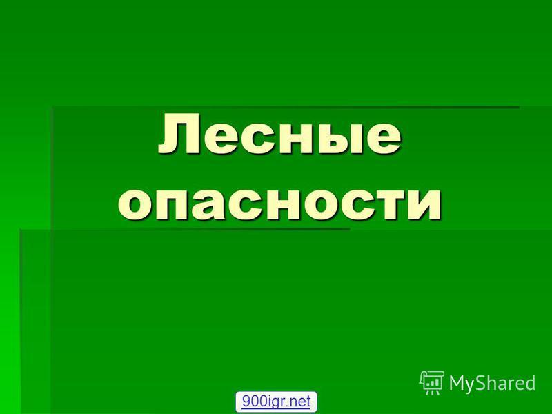 Лесные опасности 900igr.net
