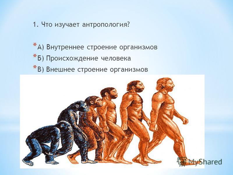 1. Что изучает антропология? * А) Внутреннее строение организмов * Б) Происхождение человека * В) Внешнее строение организмов