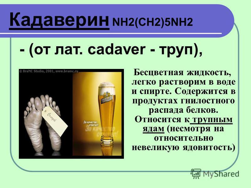 Бесцветная жидкость, легко растворим в воде и спирте. Содержится в продуктах гнилостного распада белков. Относится к трупным ядам (несмотря на относительно невеликую ядовитость) Кадаверин NH2(CH2)5NH2 - (от лат. cadaver - труп),