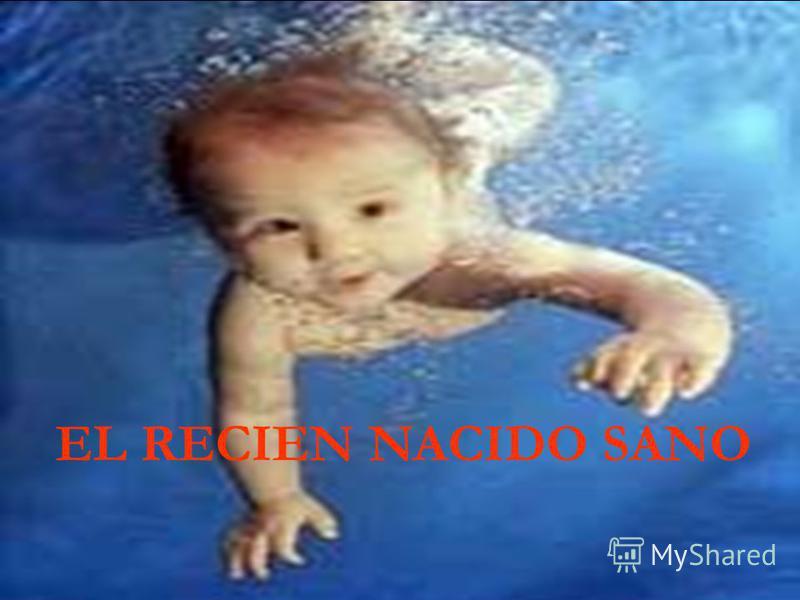 EL RECIEN NACIDO SANO