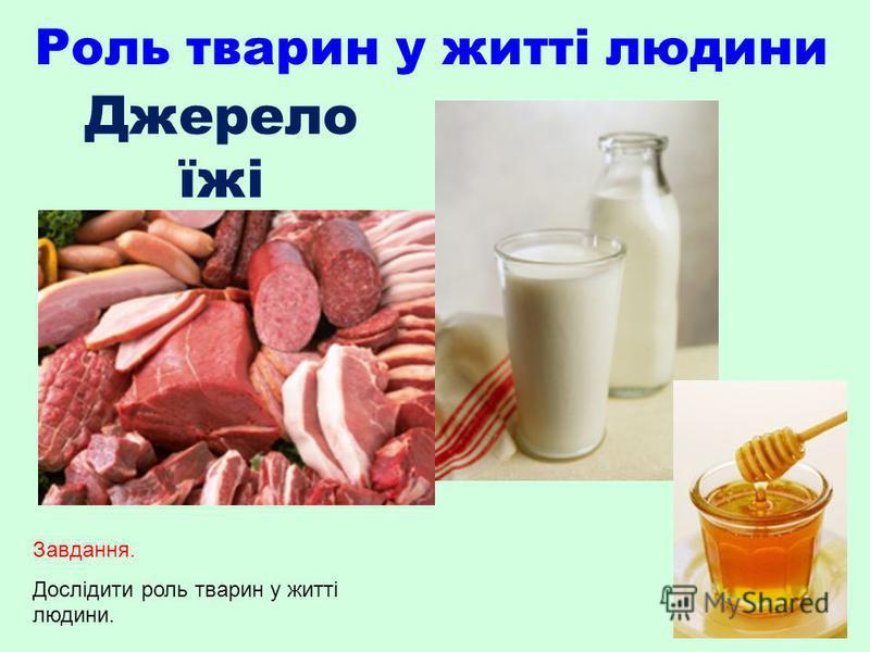 Роль тварин у житті людини Джерело їжі Завдання. Дослідити роль тварин у житті людини.