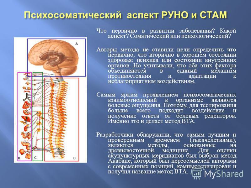 Что первично в развитии заболевания ? Какой аспект ? Соматический или психологический ? Авторы метода не ставили цели определить что первично, что вторично в хорошем состоянии здоровья : психика или состоянии внутренних органов. Но учитывали, что оба