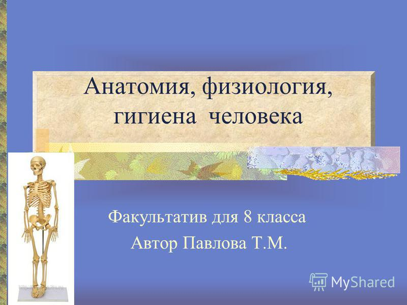 Анатомия, физиология, гигиена человека Факультатив для 8 класса Автор Павлова Т.М.